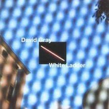 220px-White_Ladder